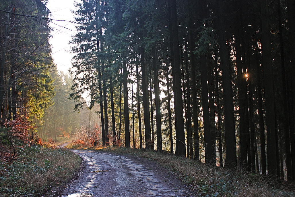 42e-Stapellager-Berge